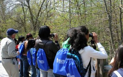 Canaan Valley Birding Festival